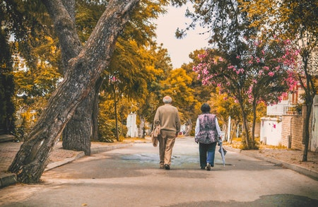 El arbolado viario tiene poderosos beneficios en la ciudad